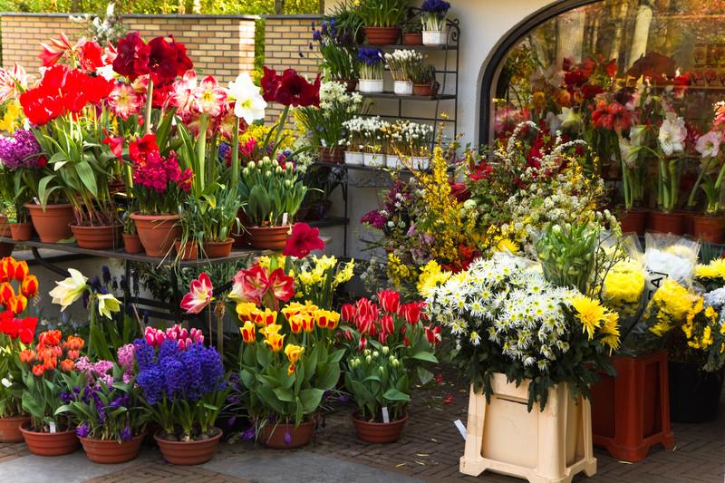 Image result for florist