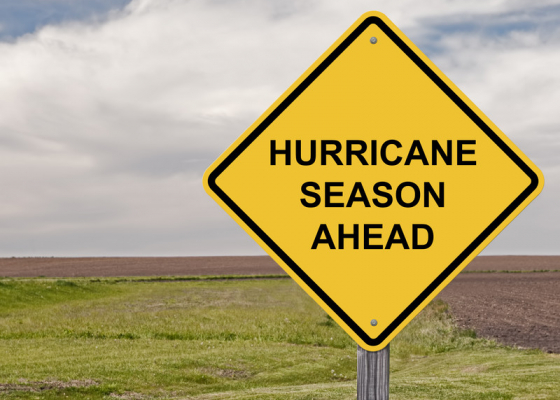 What Companies Can Learn from Hurricanes
