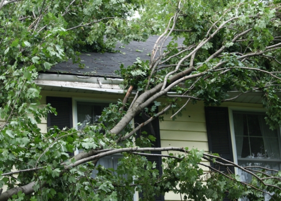 InsurTexas can help protect your home or business from damage caused by severe fall or winter weather.