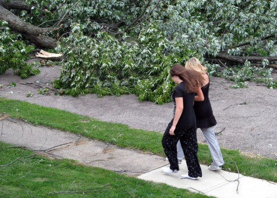 Property owners can prevent injuries, damages and liability issues through regular landscape and tree maintenance.