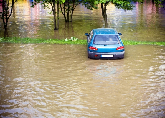 How To Avoid Purchasing A Vehicle With Flood Damage
