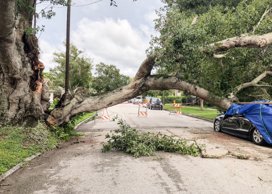 Three Lessons We Can Learn from Hurricane Nicholas