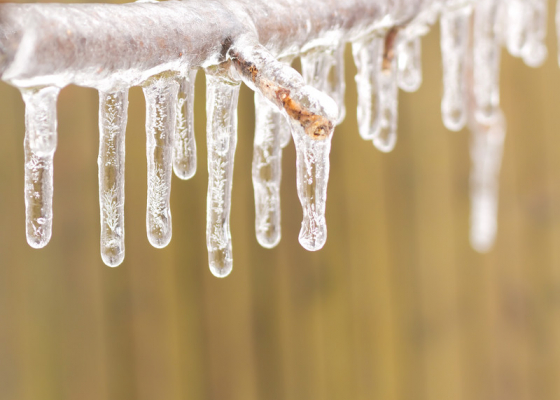 How to Handle Property Damage and Losses from Ice Storms